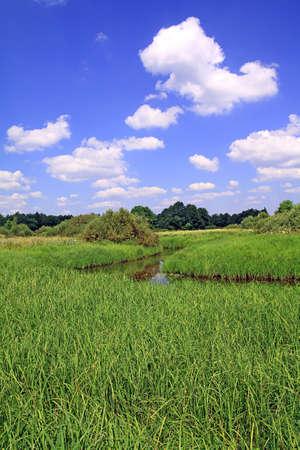 small river photo