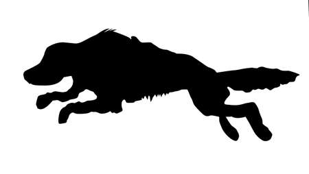 silhouette of the running dog on white background Stock Photo - 7657275