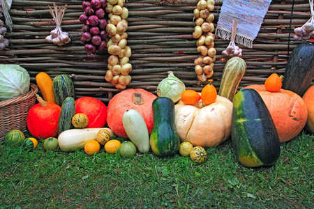 vegetable background  photo