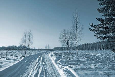 rural road in winter wood photo