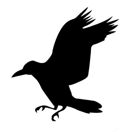 silhouette ravens on white background Vector