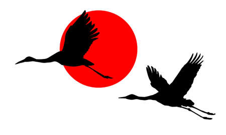 illustration of the cranes in sky on background red sun Vector