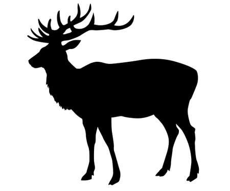 ciervo: venado de silueta sobre fondo blanco  Vectores