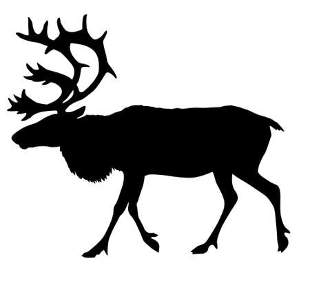 silhouette of the reindeer Stock Vector - 7704998