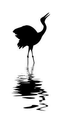 silhouette of the crane amongst water  Vector