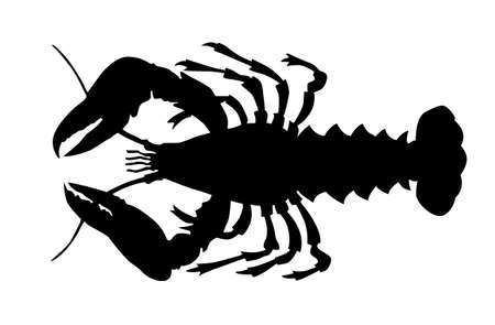 lobsters: silhouette of the cancer on white background Illustration