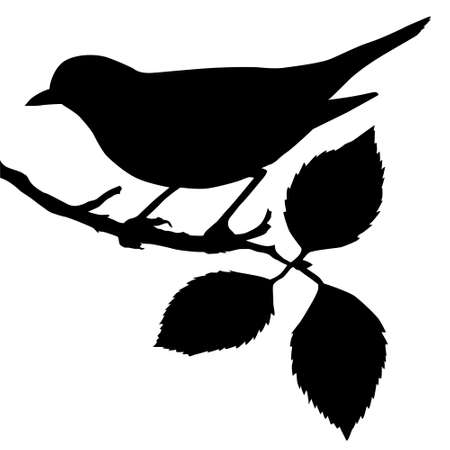 cartoon birds: silhouette of the bird on branch Illustration