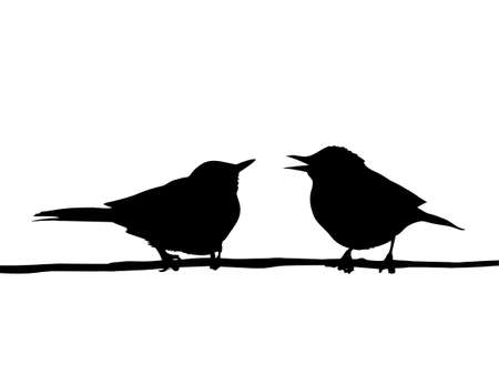 sparrows:  drawing two birds sitting on branch