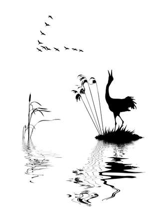silhouette of the birds on lake     Vector