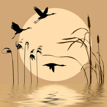 rietkraag:  tekening vogels vliegen op achtergrond zon Stock Illustratie