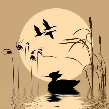 canne:   disegno di uccelli in volo su sfondo sole