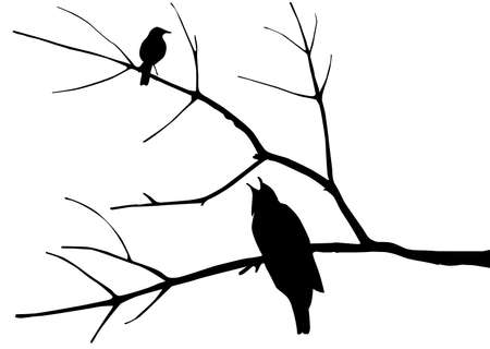 silhouette of the birds on tree Stock Vector - 7704989