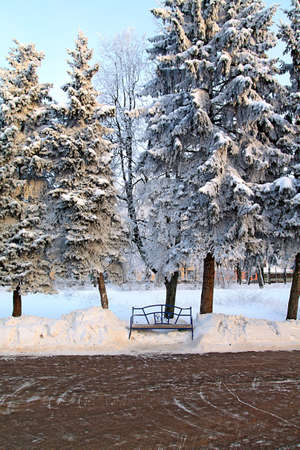 bench in winter park Stock Photo - 7705343