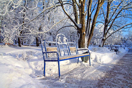 bench in winter park Stock Photo - 7705345