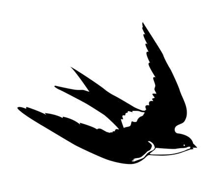 silhouette flying swallows on white background