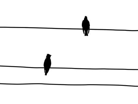 silhouette of the waxwings on wire Stock Vector - 7735143