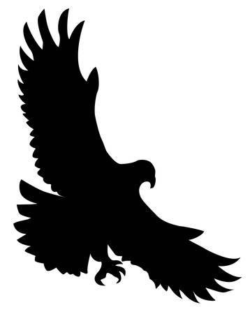 silhouette of the ravenous bird on white background