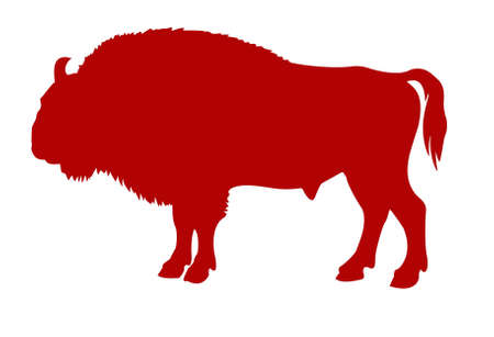 silhouette of the buffalo on white background Vector