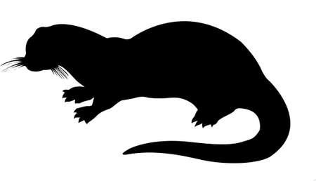 loutre: otter silhouette sur fond blanc Illustration