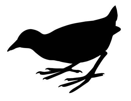 silhouette nestling on white background Stock Vector - 7735171