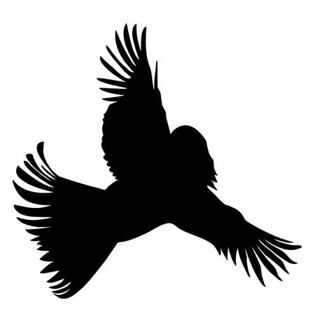 silhouette of the bird with head of the woman Vector