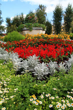 flowerbed in city photo