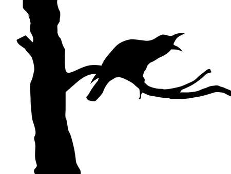 silhouette ravens on branch tree Vector