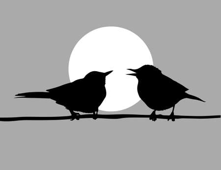drawing two birds  on solar background Vector