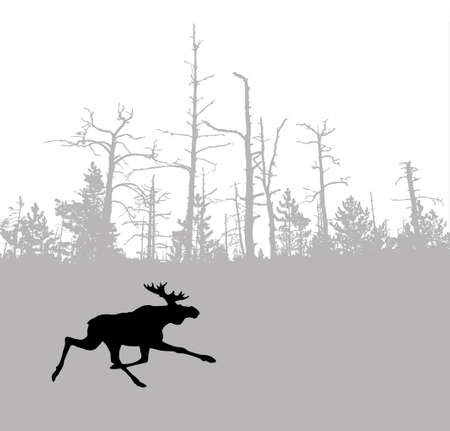 silhouette moose on wood background Vector