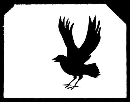 drawing ravens on white paper Vector