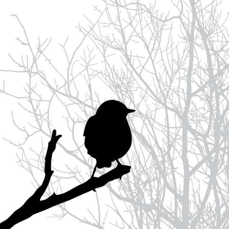 silhouette of the bird on branch Illustration