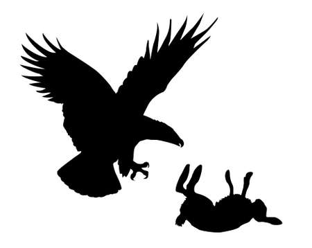 hare: illustration eagle and hare on white background