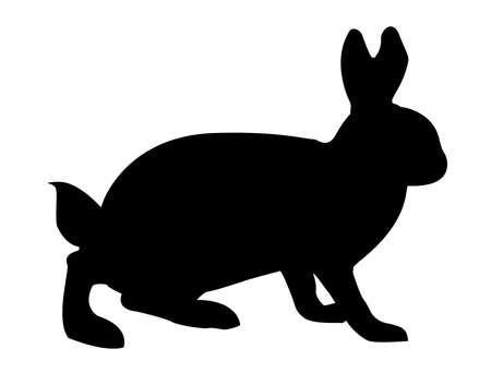 illustration hare on white background Vector