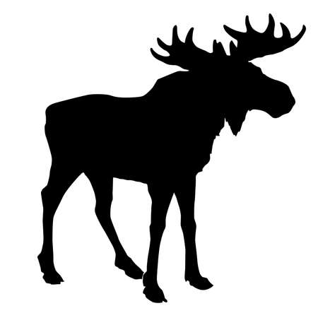 silhouette moose on white background Vector
