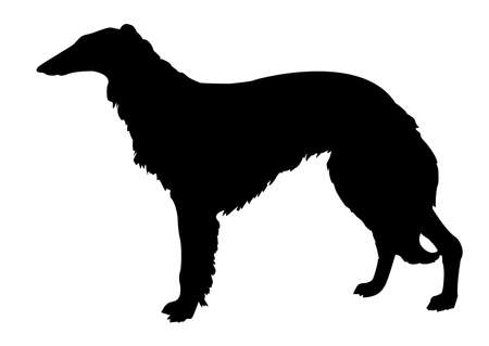 silhouette collie on white background Vector