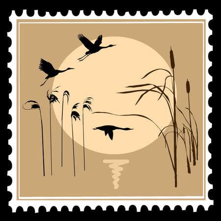 dibujo de ganso y grúa a orillas de Lago  Ilustración de vector
