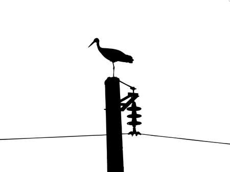 silhouette of the crane on electric pole Vector