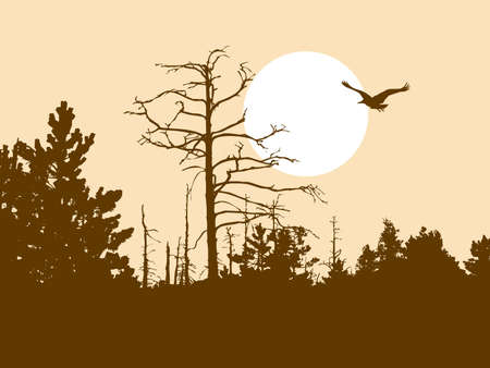perish: silhouette old wood on brown background   Illustration