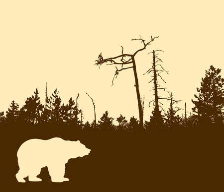 perish: silhouette bear