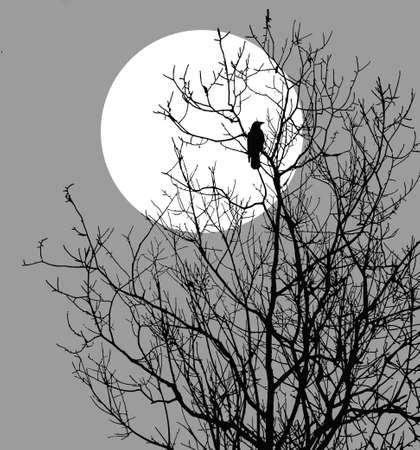 Ilustración ravens sentado en árbol contra el sol