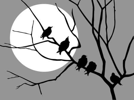 illustration migrating starling on branch tree  Vector