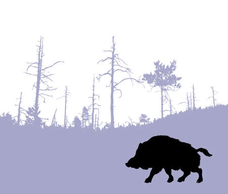 silhouette of the wild boar Vector