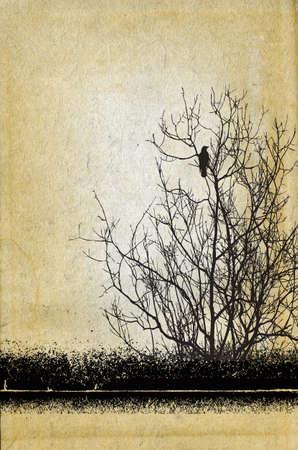 crow: grunge background