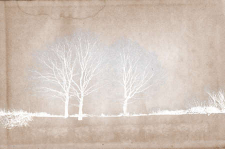 silhouette wood on grunge background Stock Photo - 7830684