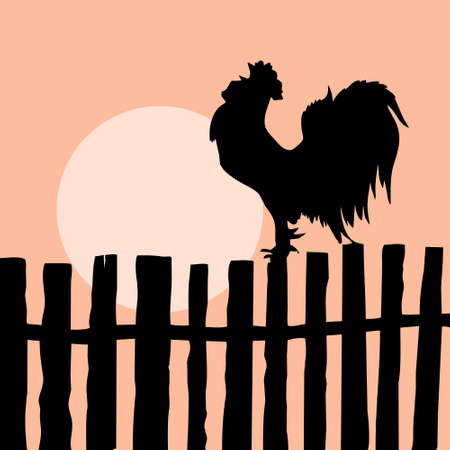 silhouette of the cock on old fence Vector
