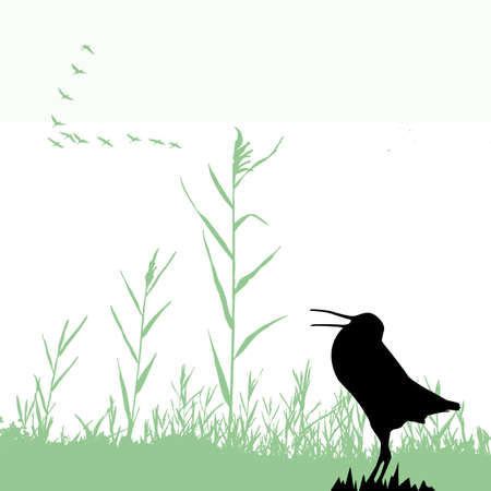 silhouette of the snipe Stock Vector - 7830975