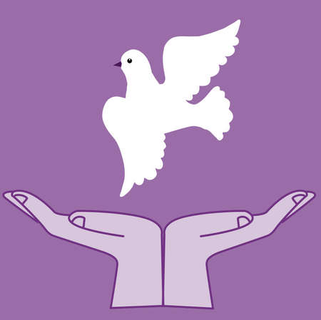 vector  illustration of the dove in hand Stock Vector - 7939347