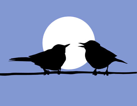 vector drawing two birds  on solar background Vector