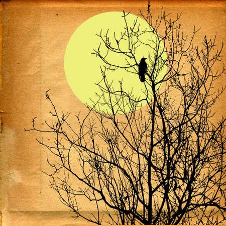 grunge background Stock Photo - 7939448