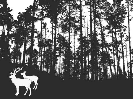 vector silhouette of the deers in thick wood     Vector